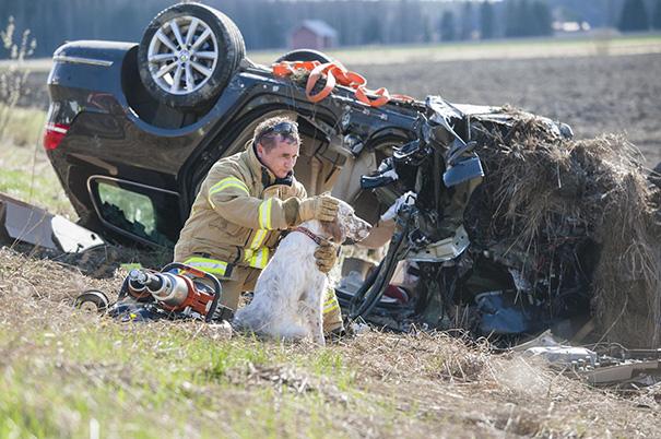 Спасатель разговаривает с собакой после ДТП